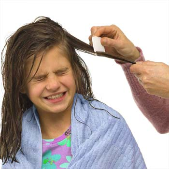 Prevention of Head Lice